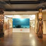 la Maison de la Nouvelle-Calédonie en visite virtuelle 360°